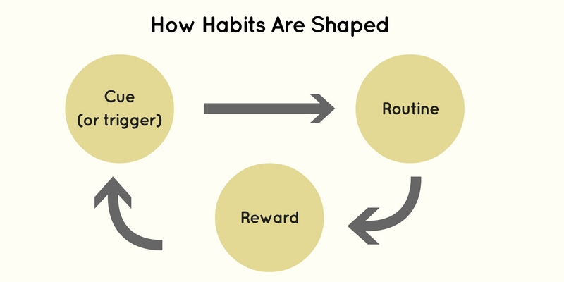 how-habits-are-shaped